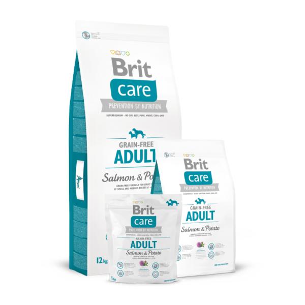 Brit Care Adult Salmon & Potato sausas maistas šunims