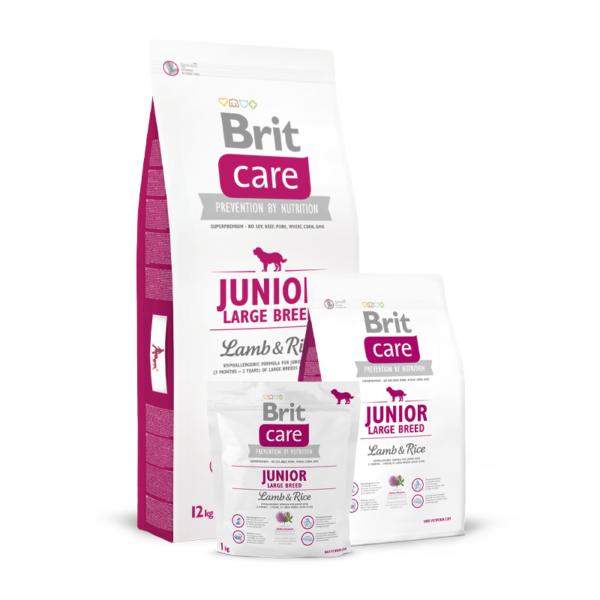 Brit Care Junior Large Breed Lamb & Rice sausas maistas šunims